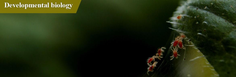 شروع به کار پرتال گروه زیست شناسی علوم جانوری- سلولی تکوینی